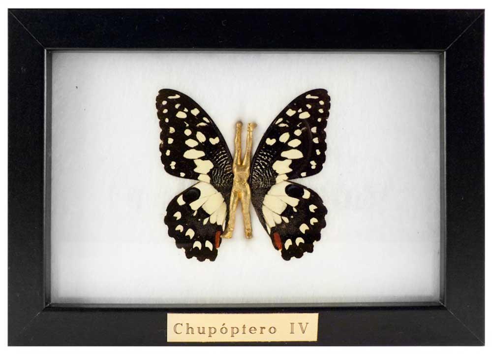 Chupóptero-IV---laurasalguero