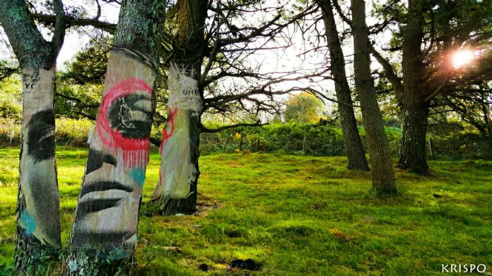 © Kristina Peña | Pintando árboles