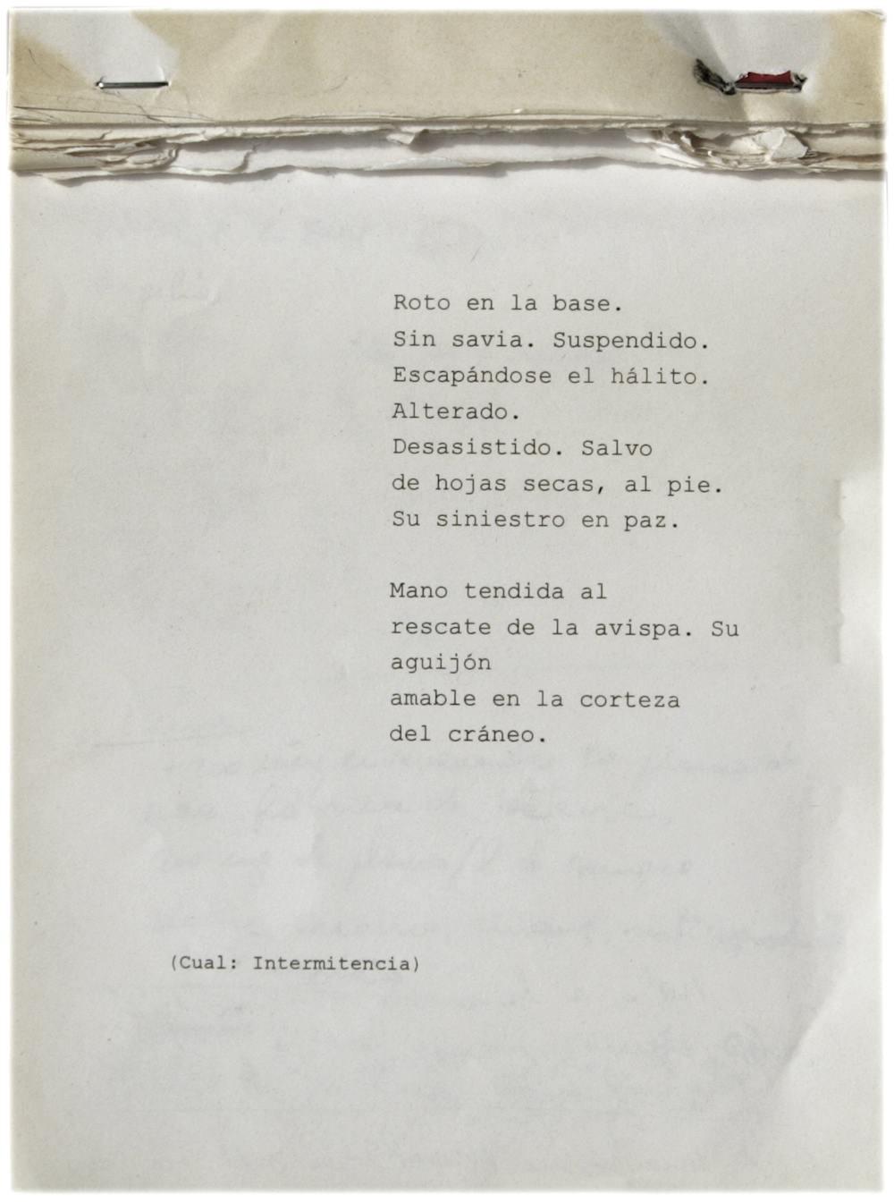 RE-ACTION, Genealogía y contracanon | Alonso y Marful | Proyectos Invitados | Mujeres Mirando Mujeres | MMM17