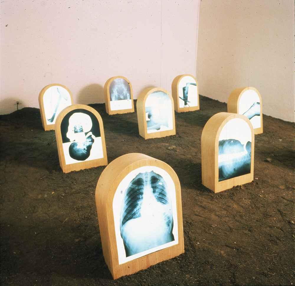 NELA OCHOA | A plomo, 1994 Radiografías de baleados, madera, metacrilato y luz fluorescente sobre tierra Colección Museo Alejandro Otero