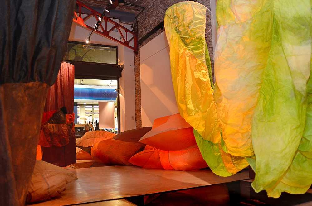 2011 EUQSOB, el bosque invertido.Mireya Baglietto Galería Pasaje 17 Bs.As.Ph.Milos Deretich