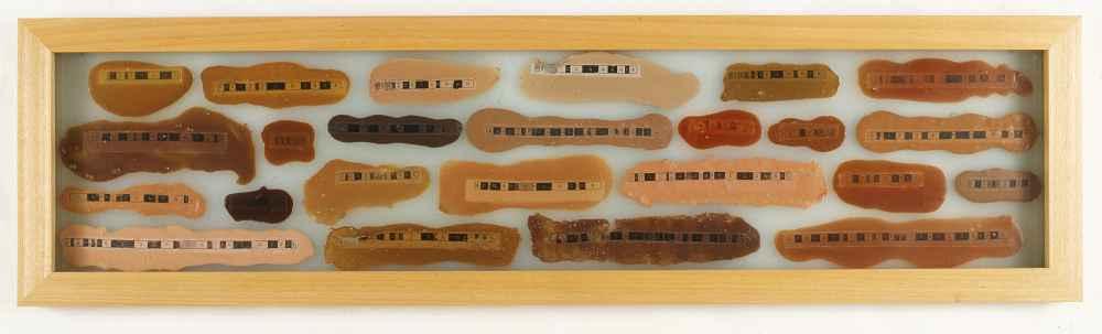 NELA OCHOA Cromosomos, 1999 Látex y tinta sobre vidrio Colección Fundacion Polar