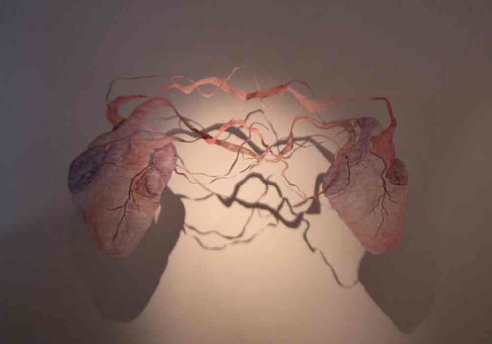 Amor sin ortografía.2010