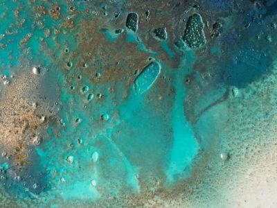 Marina Gadea. Blue mind origin