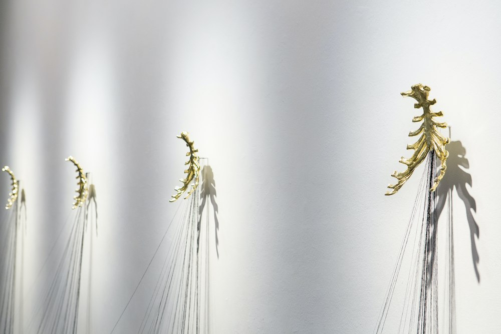 Flor de espinas, detalle _ 2020. Nerea Ubieto. ROMINA RIVERO. VII MUJERES MIRANDO MUJERES