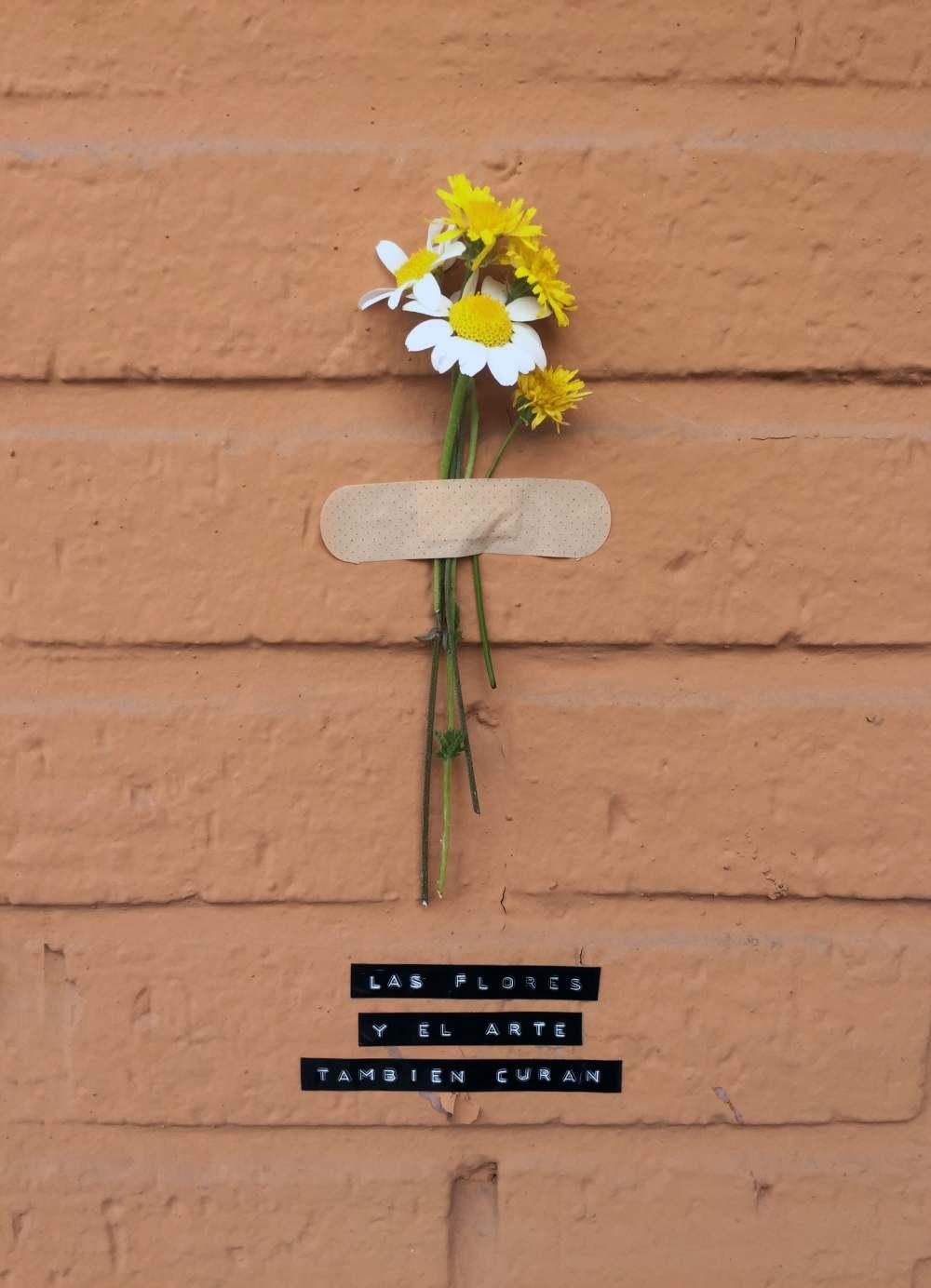 Las flores y arte también curan.